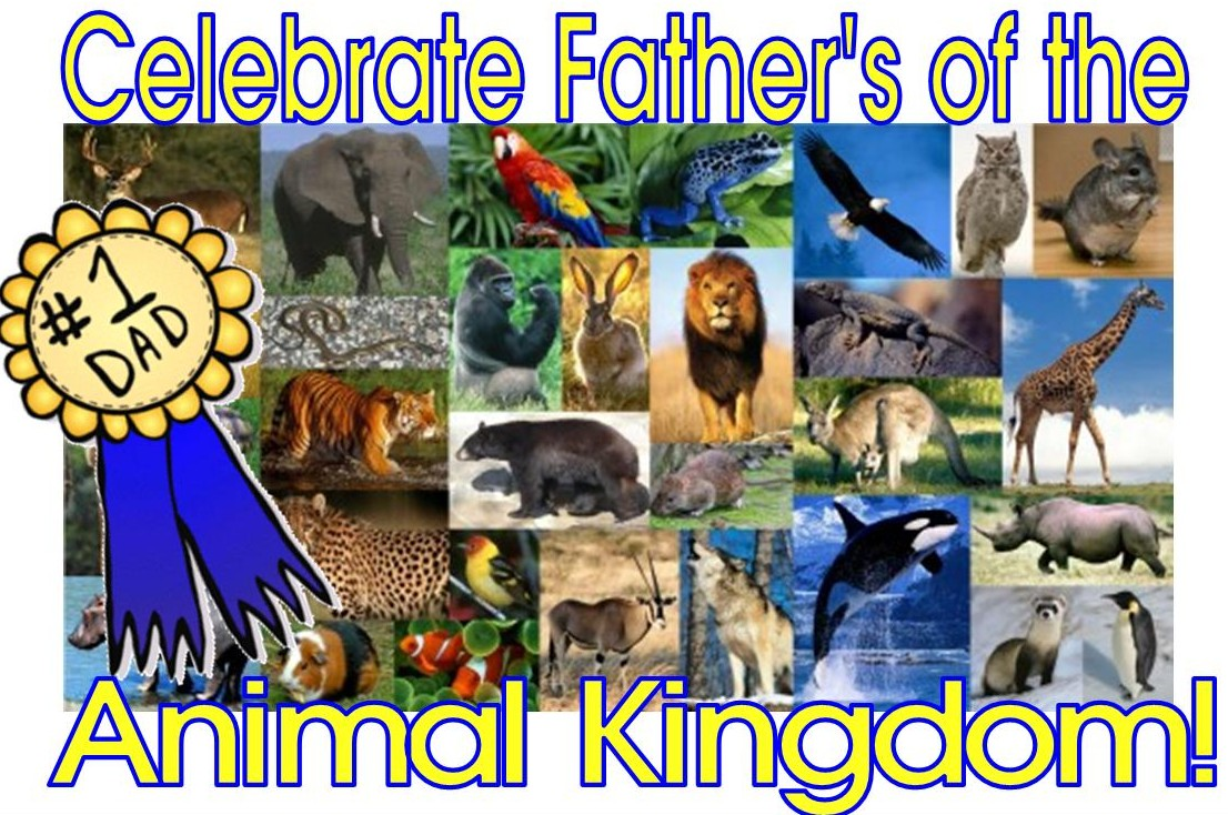 Image of: Classification High Touch High Tech Wild And Wonderful Fathers Of The Animal Kingdom