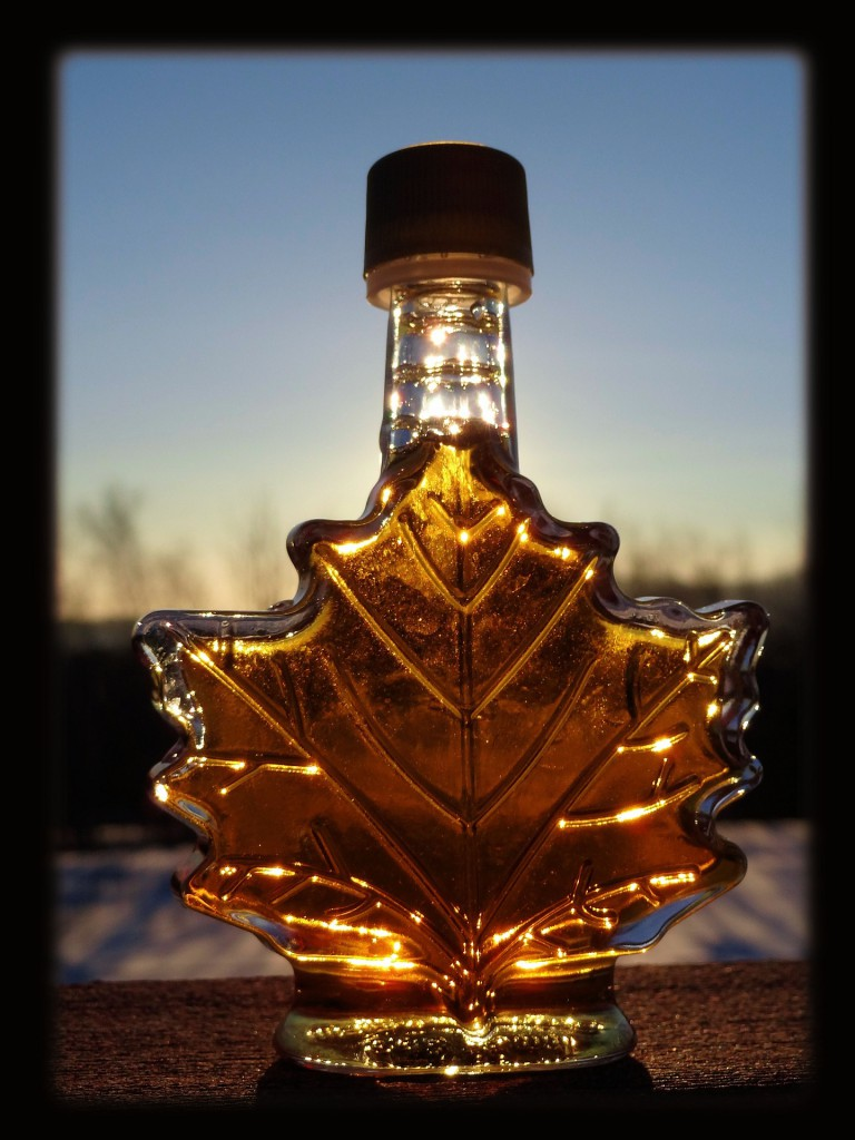 e13509d5982 Sugar From Trees  The Science of Maple Syrup